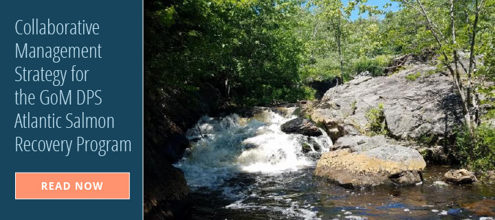 Collaborative Management Strategy for the GoM DPS Atlantic Salmon Recovery Program