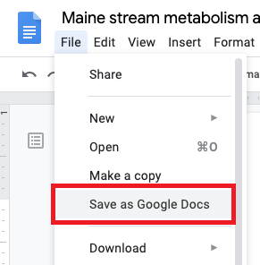 Google Drive Save as Google Doc image.
