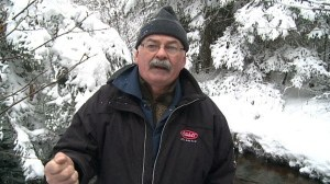 Salmon recovery pleases conservation group