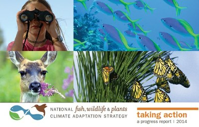 Regional science efforts highlighted in national climate adaptation strategy progress report