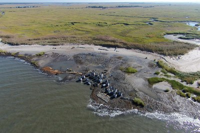 MARCO and NWF collaborate to remove barriers for practitioners in the field of coastal resilience