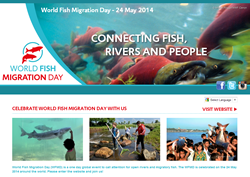 Official Website for World Fish Migration Day