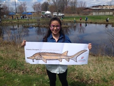 Atlantic sturgeon at Fishing Day with Zoe