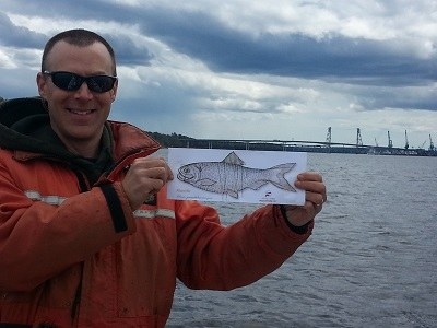 Jason Bartlett (Maine DMR) and fish in Kennebec Estuary