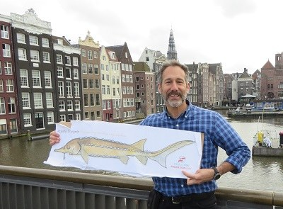 TNC's Josh Royte, Atlantic Sturgeon in Amsterdam.  Whew long swim!