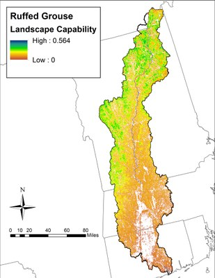 Landscape Capability for Ruffed Grouse