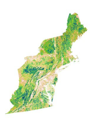 Index of Ecological Integrity, Stratified by Ecosystem, Version 3.1, Northeast