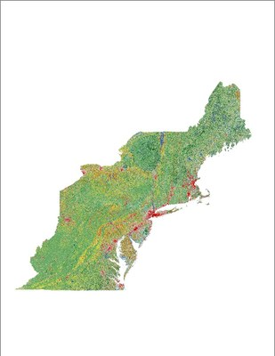 Land Cover, 2011