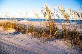 Atlantic and Gulf Coast Resiliency Project
