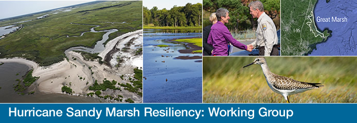 A slideshow of aerial photographs from Hurricane Sandy Marsh Resiliency project sites