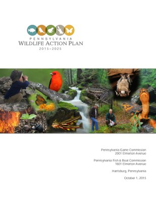 PA WAP front cover